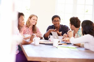 Executive Summary: Using Focus Groups