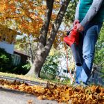 Reality Blog: How a Leaf Blower Helped Set My Copywriting Fees