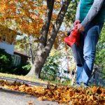 Reality Blog: How a Leaf Blower Helped Set My Copywriting Fees