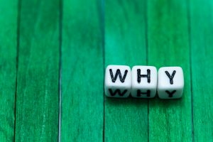 Why Are You a B2B Copywriter?