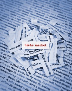 tips to switch your niche
