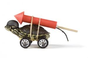 turtle w rocket on back