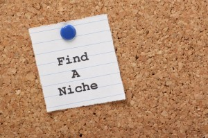 Reality Blog: Choosing Your Copywriting Niche
