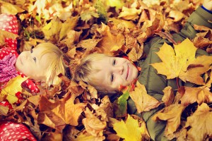 Reality Blog: The Scarcity of Leaves